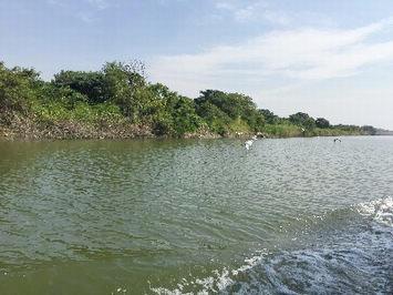 台南と高雄の境を流れる二仁渓という河川が現場です