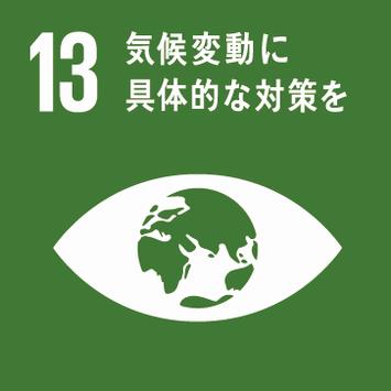 No.13